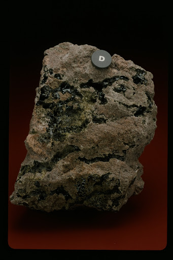Fulgurite in Weathered Andesite