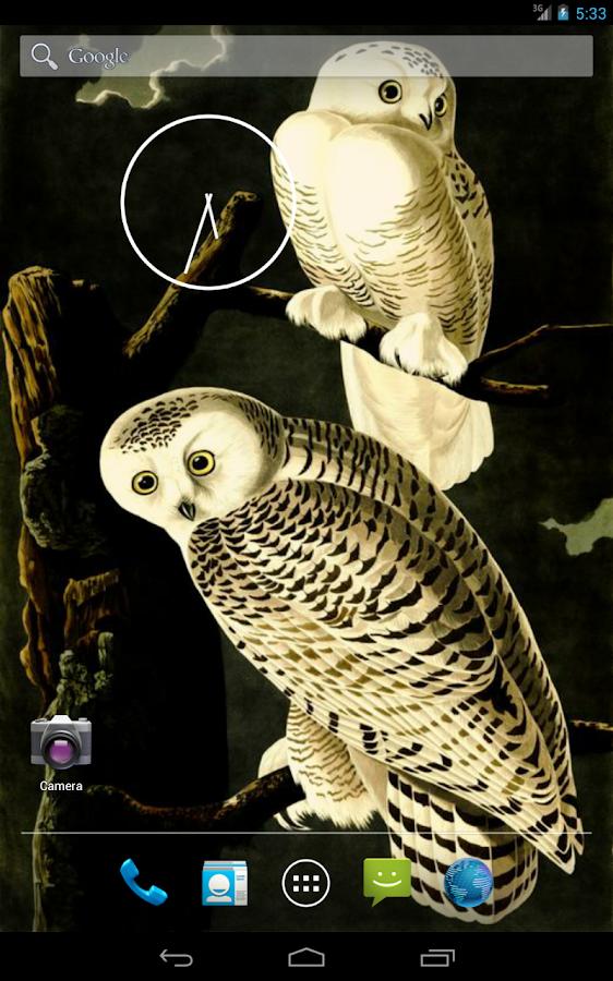 Audubon's OWLS HD+ Wallpaper - screenshot