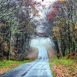 fog on road.jpg