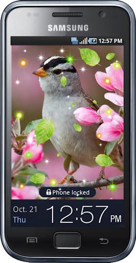 Springs Birds live wallpaper