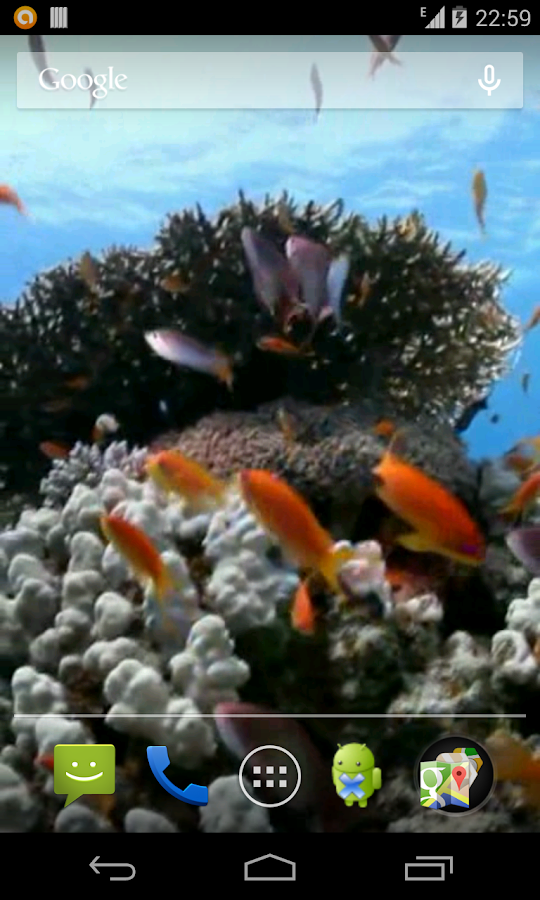 Sea fish Video Live Wallpaper - screenshot