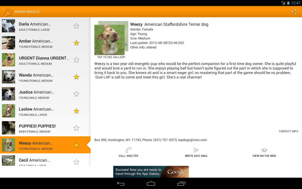 Fido Pet Adoptions - screenshot
