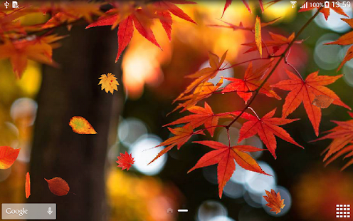 Autumn Wallpaper Android Apps on Google Play