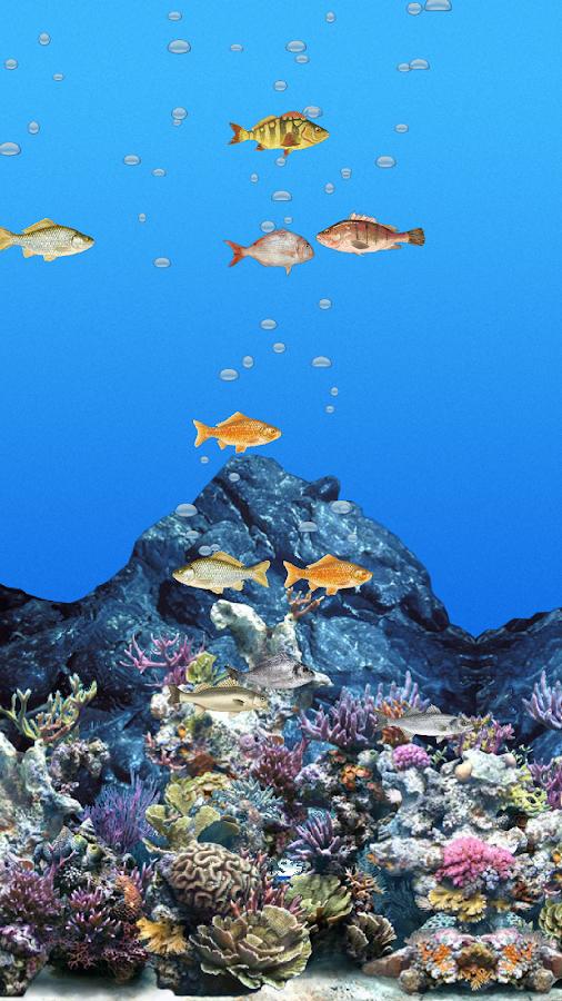Abubu oceano sfondo animato app android su google play for Sfondo animato pesci