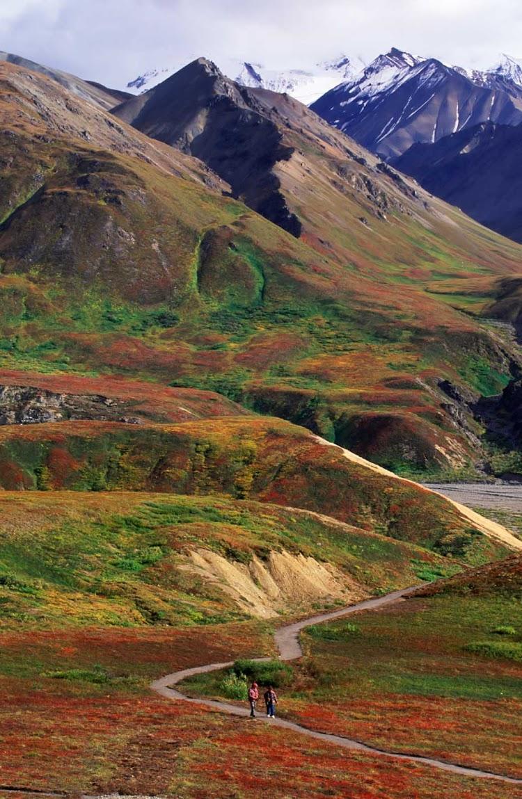 The Alaska Mountain Range in Denali National Park in Alaska.