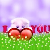 I Love You Kitty Cat Wallpaper