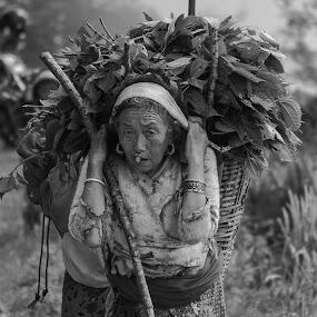 Face Of Nepal by Naveen Rai - People Street & Candids ( work, old, life, woman, hard, people, livelihood, nepal, , b&w, portrait, person )