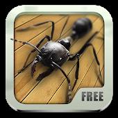 Bugs Live Wallpaper