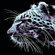 Shadow Leopard Live Wallpaper
