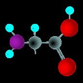 Amino Acid Memorizer