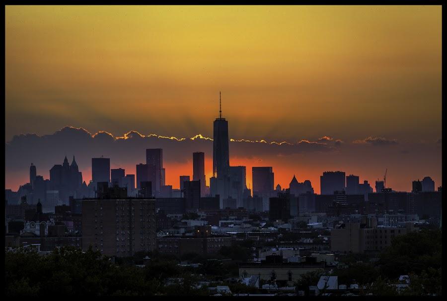 Freedom Tower Sunset by Kevin Gerien - Uncategorized All Uncategorized ( bushwick, sunset, new york, cityscape, landscape, brooklyn,  )