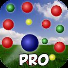 Dodge Balls: Pro Game icon