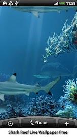 Shark Reef Live Wallpaper Free Screenshot 1