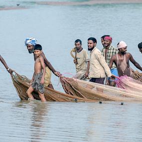 Fishermen  by Deepak Goswami - People Professional People ( fishermen, fish, indian, india, nets, fishing, pond )