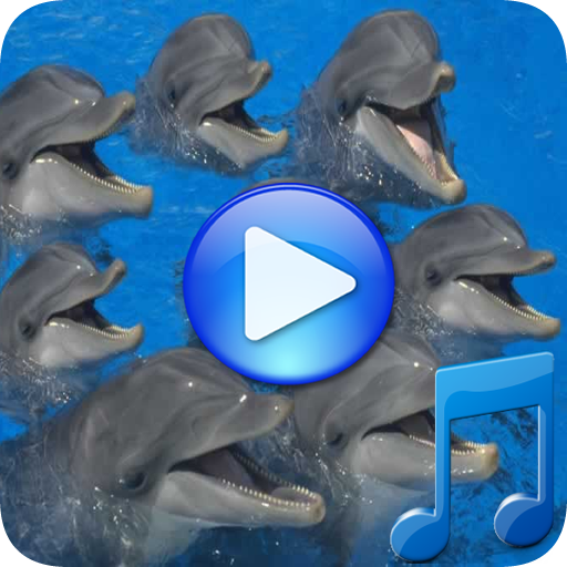 Dolphins songs to sleep file APK Free for PC, smart TV Download