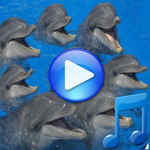 海豚的歌曲睡覺 LOGO-APP點子