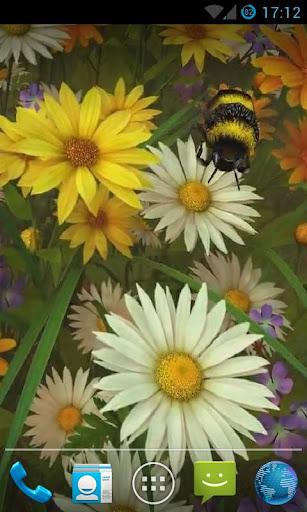 Bee Live Wallpaper HD