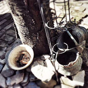 Old Tin Pots for Flowers and Water with Cherry Tree by Nat Bolfan-Stosic - Artistic Objects Other Objects ( old, pots, tin )