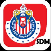Chivas SDM
