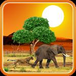Safari Live Wallpaper