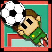 Super Soccer Goalie