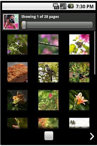 Flickr PF - screenshot