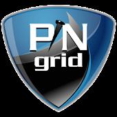 PINgrid Token