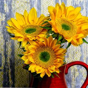 by Nancie Rowan - Flowers Flower Arangements