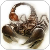 How To Draw Scorpion Animals