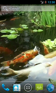 Japanese Koi Fish Wallpaper - screenshot thumbnail