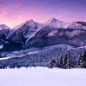 Pure winter by Boris Michaliček - Landscapes Mountains & Hills ( winter, snow, tatras, high taras, sunrise, frozen, slovakia )