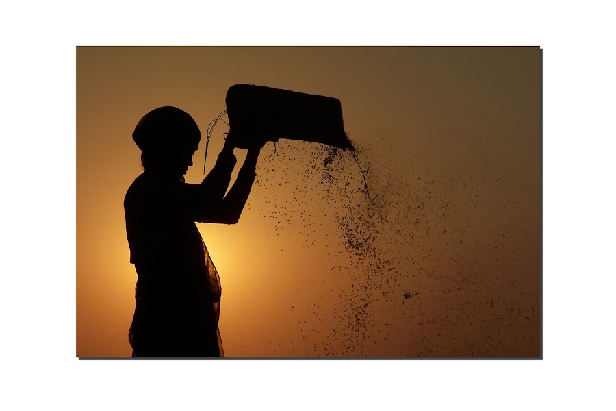 A day in My Village by Valaboju Shivakumar - People Professional People