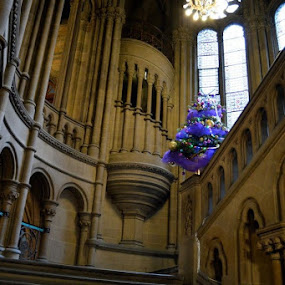 Manchester Town Hall by Bonnie Lea - Buildings & Architecture Public & Historical