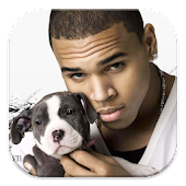Chris Brown Puzzle Games
