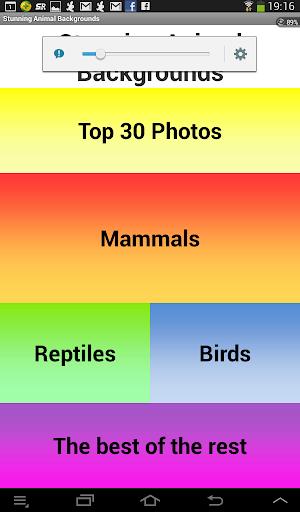 Stunning Animal Backgrounds