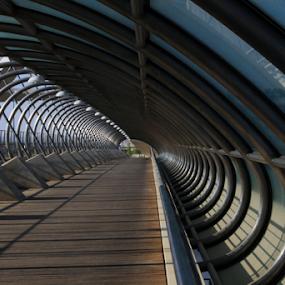 Loopy curves by Joseph Escopin - Buildings & Architecture Bridges & Suspended Structures ( aluminum bridge, metropoli, zaragoza, bridge, city )