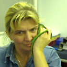 Anna van der Westhuizen
