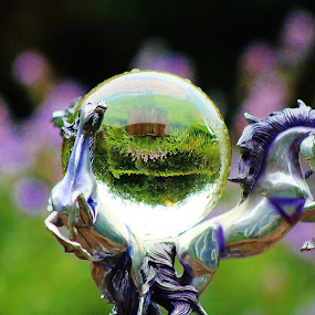 Unicorn love by Catherine Cross - Nature Up Close Other Natural Objects ( reflection, crystal ball, purple, green, beautiful, unicorn )