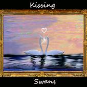 Kissing Love Swans -  Live