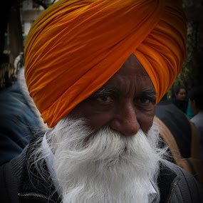 Sikh Man With Pure White Beard  by VAM Photography - People Street & Candids ( sikh, parade, places, nyc, street photography,  )