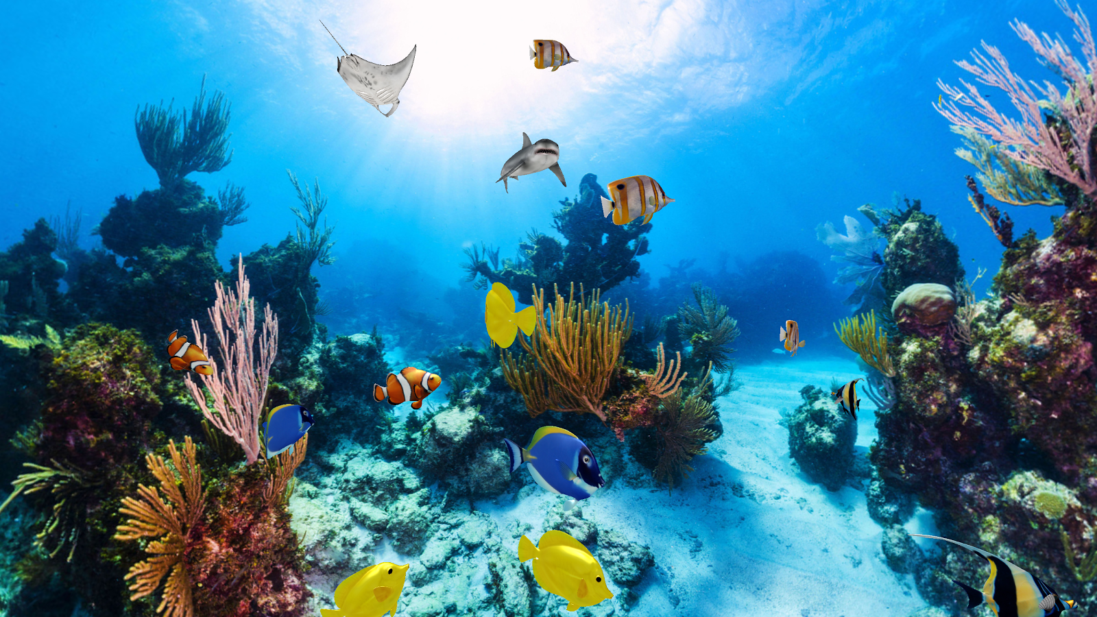 ... Free Download Aquarium Live Wallpaper For Windows 8: 3d Aquarium Wallpaper For Windows 8 :