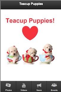 Teacup Puppies - screenshot thumbnail