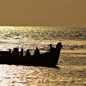 return  by B Thottoli - Landscapes Waterscapes ( #beach #arabian sea#kerala, silhouette, india.fishing )