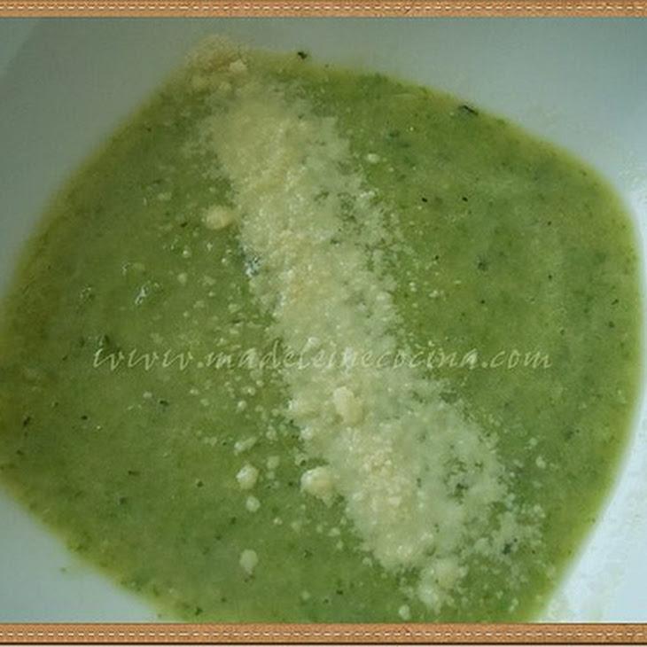 Zucchini and Basil Cream Soup Recipe