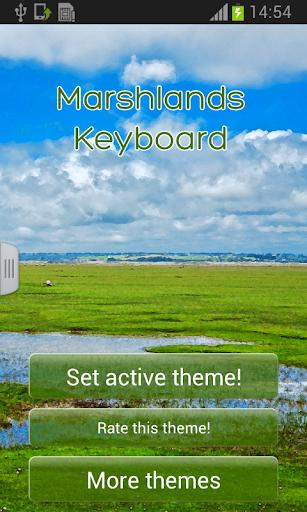 沼澤地鍵盤