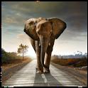 Magic Effect Elephant icon