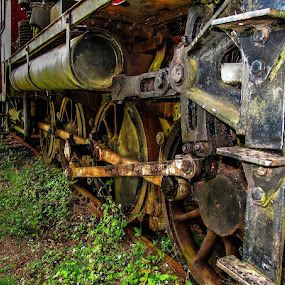 Forgotten and rotting by Ned Kelly - Transportation Trains ( railroad, locomotive, train, steam,  )