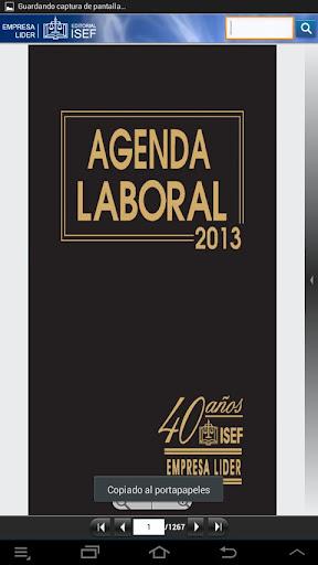 Agenda Laboral ISEF 2013
