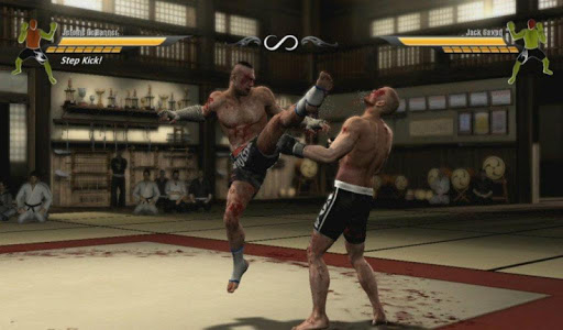 MMA Game 3D
