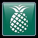 PineApp logo